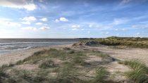 Fort-Mahon-Plage | 50°20' N, 1°34' E | MMXVII, août © Thibaut Plaire
