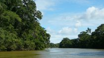 Wallace river, Belize district | 17°45' N, 88°21' W | MMIX, novembre © HRH Grand Duchess Julianna of Ruritania