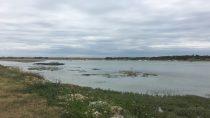 Port-Guillaume, Dives-sur-Mer | 49°17' N, 0°06' W | MMXIX, août © S.M.I. Olivier
