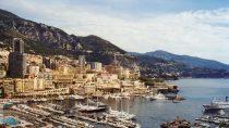 Munegu / Monaco | 43°44' N, 07°26' E | MM, août © S.M.I. Olivier