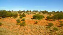 Alice Springs | 23°42' S, 133°52' E | MMXI, mai © Aurélie K.